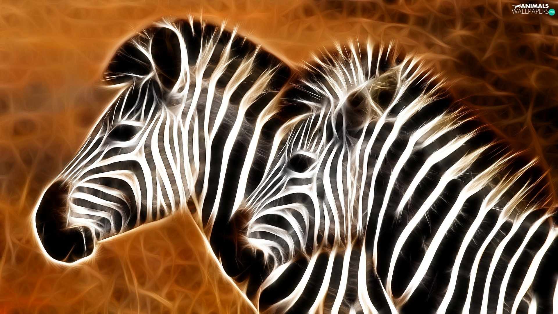 Fractalius, Two, zebra