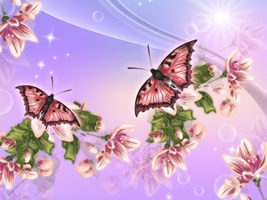 butterflies, sun, 2D Graphics, Flowers