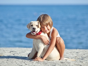 Beaches, water, Puppy, Labrador Retriever, Kid