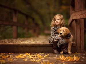 friend, Golden Retriever, Leaf, puppie, girl, bridge, autumn