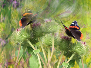 graphics, plant, teasel, butterflies