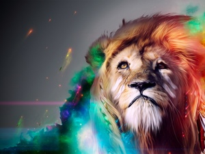 Lion, mane, colors, dispelled