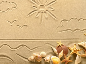 Sand, Shells, starfish, Drawing