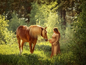 viewes, forest, Horse, trees, Women