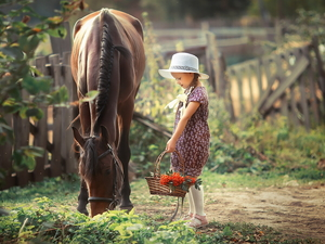 Horse, Hat, basket, girl