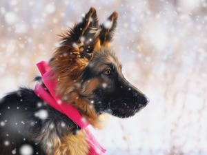 Puppy, snow, graphics, German Shepherd