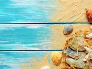 Sand, Shells, boarding, net, starfish, Blue, composition