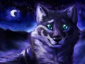 Digital Art, Wolf, Night