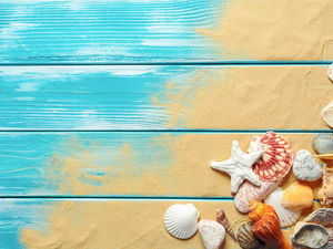 Sand, Shells, boarding, Pebble, starfish, Blue, composition