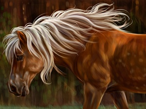 picture, watercolor, mane, White, Horse