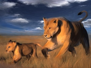 savanna, stretching, lions