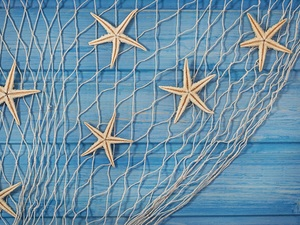 starfish, decoration, net